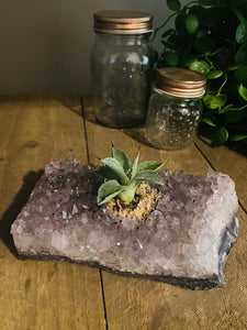 Amethyst crystal succulent and candle holder Amethyst Crystal with Succulent and Candle Holder