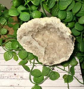 Large Clear Quartz crystal geode - home décor and table display AGMD0006