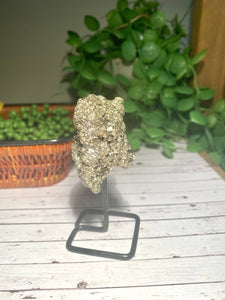 Natural Pyrite on black display stand -  home décor or unique table piece