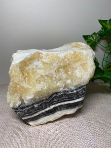 Zebra Calcite display piece - home décor or office display