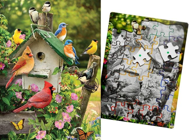 9097-singing-birdhouse-cabane-oiseau-chant-color-code-couleur-alzheimer-puzzle-special.jpg