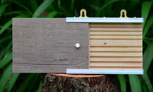I - Specialised Bee Hotel - Open-View