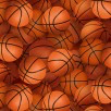 Sports Collection- Basketballs