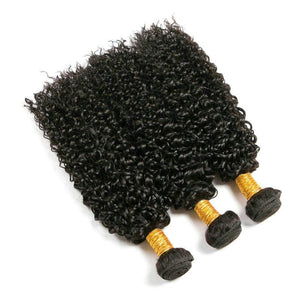 4 Bundles Brazilian Virgin Kinky Curly Hair Weave Human Hair Bundle Deals-Mswisdom Hair