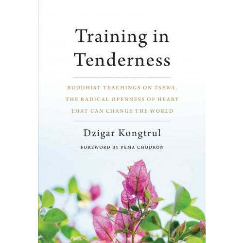 Training In Tenderness - Buddhist Teachings On Tsewa The Radical Openness Of Heart That Can Change.. - books 4 people