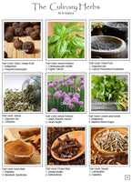 Culinary Herbs & Spices Reference Manual