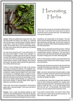 Making Herbal Remedies Reference Manual