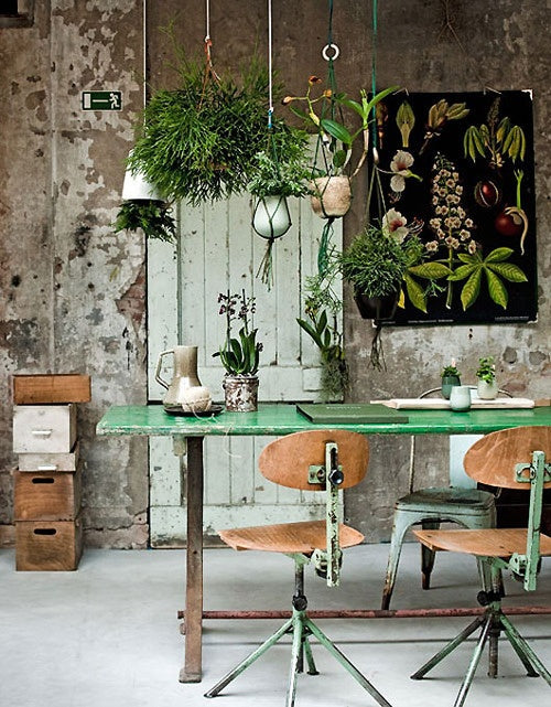 earthy, natural office
