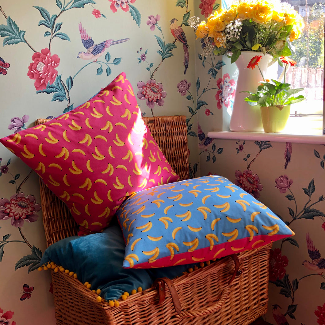 Pink and Blue Banana Cushions