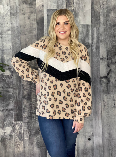 Leopard Print With Contrast Chevron Detail