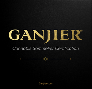 Ganjier First Step