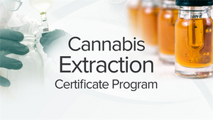 Cannabis Extraction Certificate Program