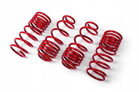 MTS Mercedes-Benz lowering springs