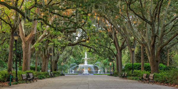 Forsyth Fountain in Savannah, GA