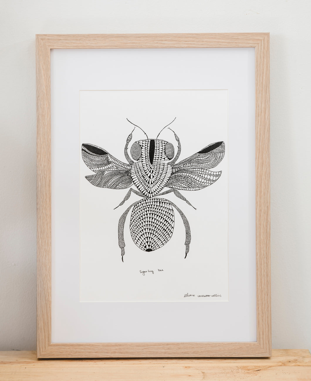 Native Bee Single - Framed Signed A4 Print