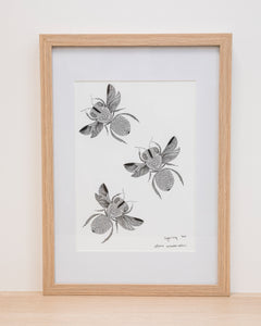 Native Bee - Framed Signed A4 Print