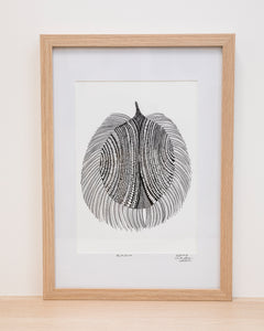 Echidna - Framed Signed A4 Print