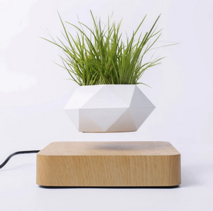 Magnetic Levitation Wooden Grain Base Hexagonal Flowerpot