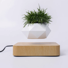 Load image into Gallery viewer, Magnetic Levitation Wooden Grain Base Hexagonal Flowerpot