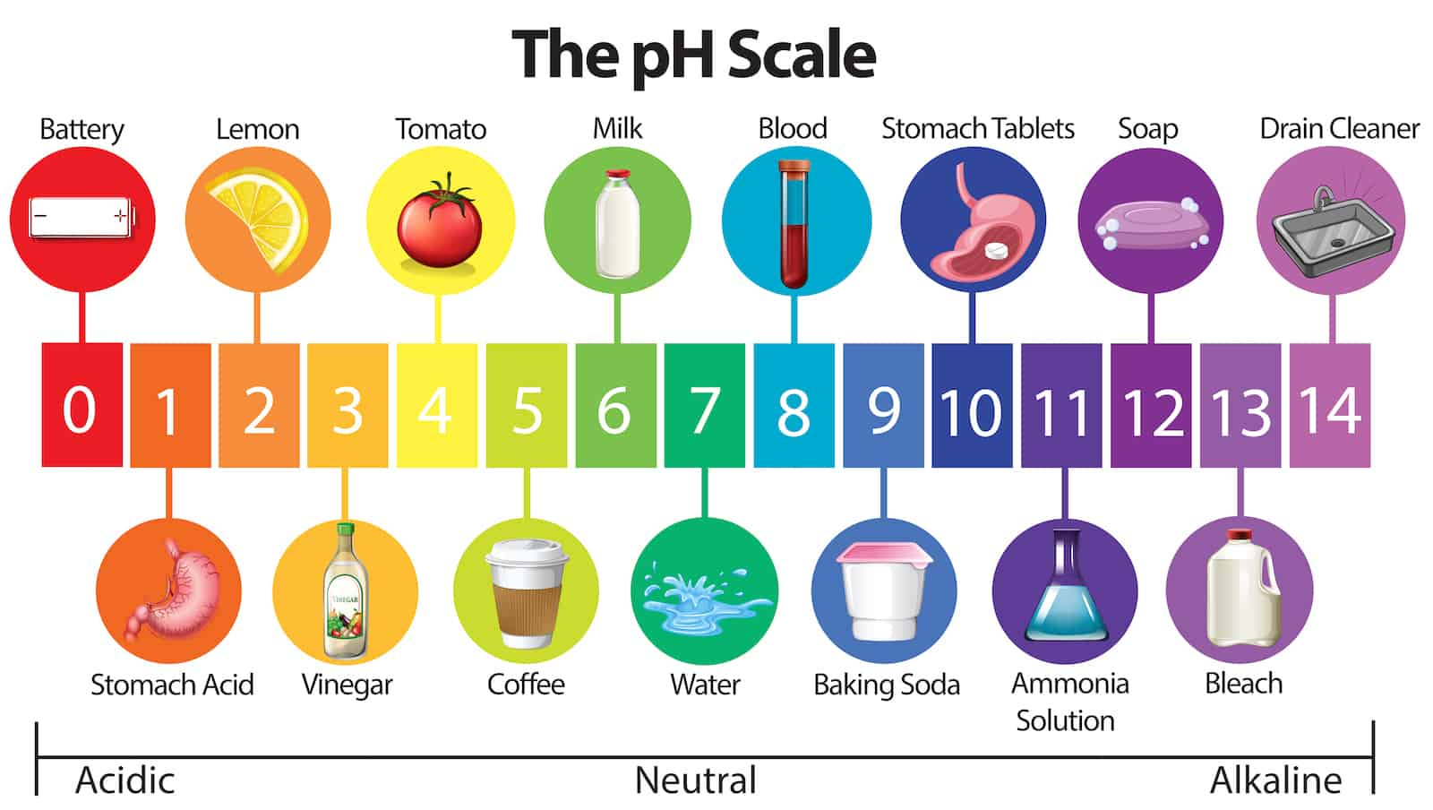 The pH scale runs from zero to 14 (but there are substances outside of this scale as well)
