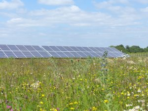 Hampshire solar farm