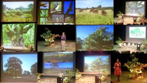 Frome tree conference
