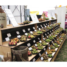Load image into Gallery viewer, Perry pears at the Malvern Show