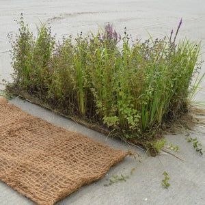 Pre-planted coir mats for ponds