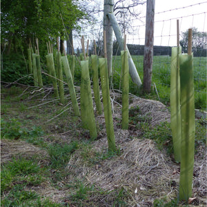 Biodegradable hedge guards