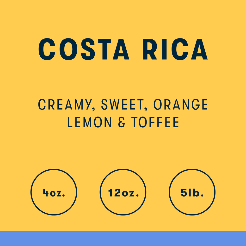 Costa Rica Yellow Honey Single Origin Coffee - RIVET Coffee