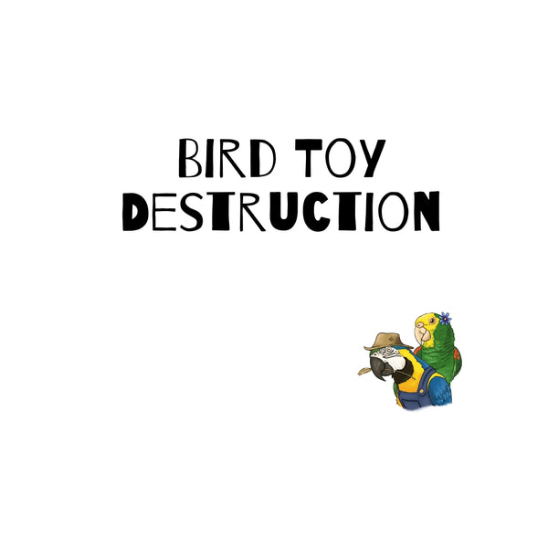 Bird Toy Destruction! It's a GOOD thing!