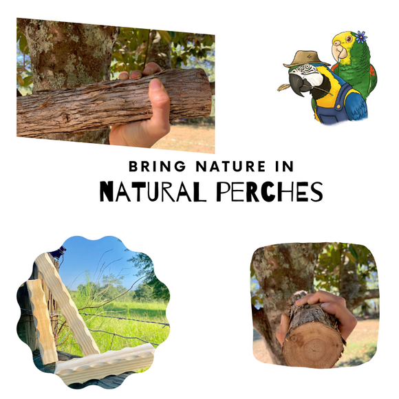 Natural Perches