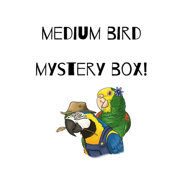 Mystery Box - Medium Birds
