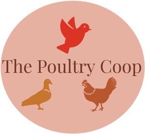 The Poultry coop