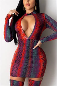 Fashionable Sexy Snake Print Long Sleeve Dress (Without Socks)