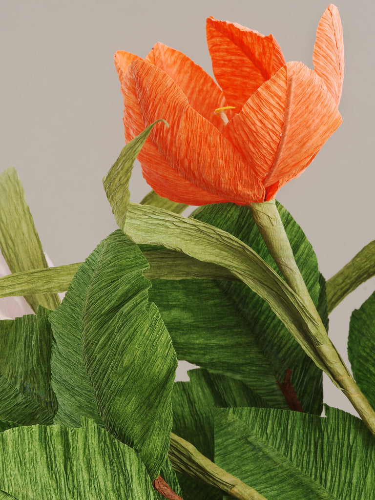 _<h1>Beauty In Details</h1><p>Our botanical interpretations mimic natural forms, but a closer inspection reveals the true ingenuity of our art: subtle folds, crinkles, cuts, and creases combine with modern colors to produce stunning blooms that stand on their own.</p>