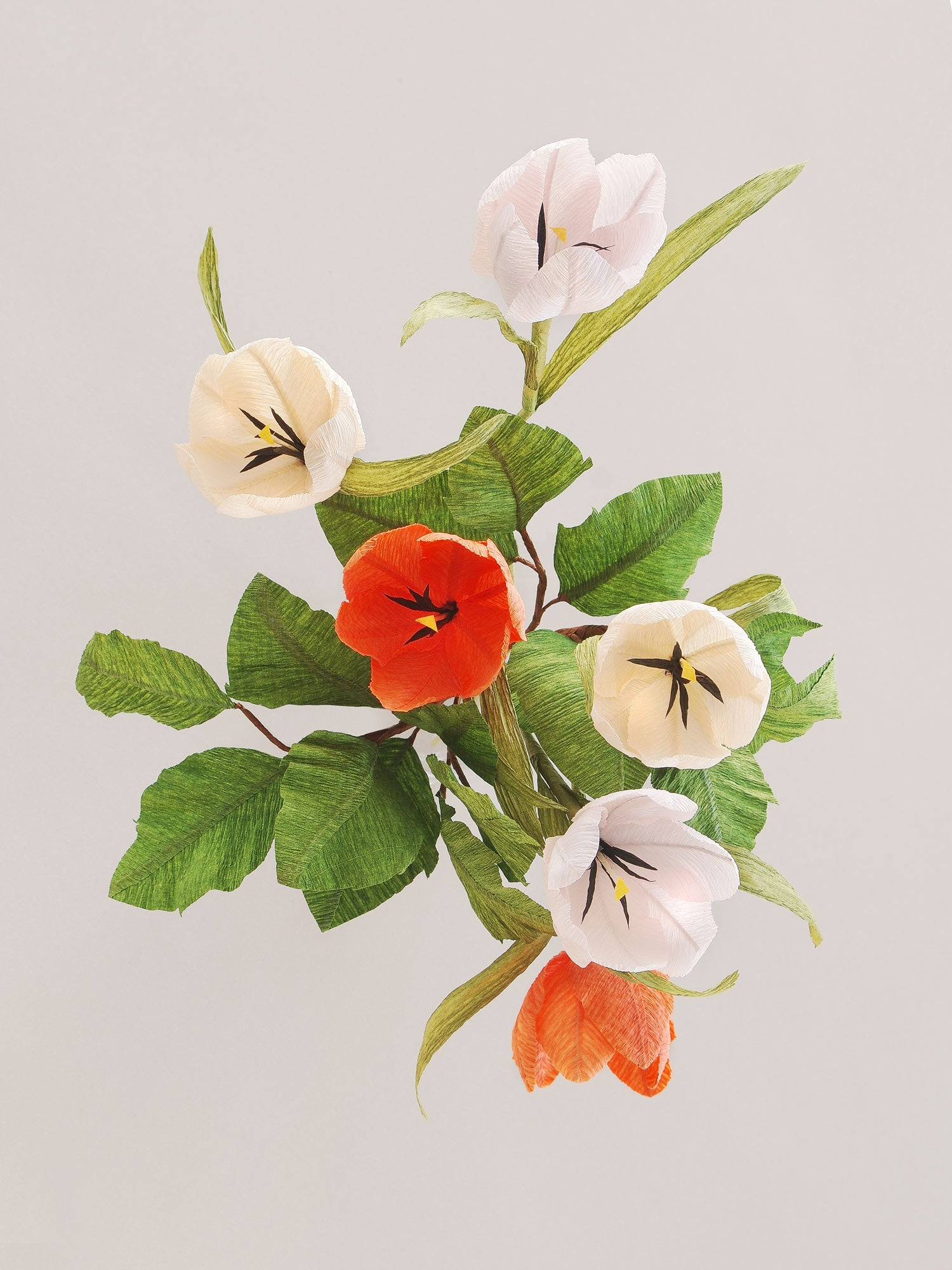 _<h1>Go Dutch</h1><p>Peach, pale pink and bright orange tulips accented with bright green leaves.</p>