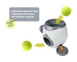 Dog Fetch & Treat Game