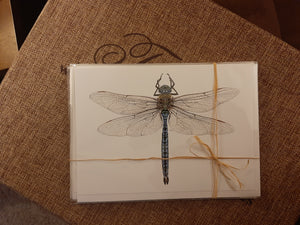 6 pack - Blue Dragonfly Stationary (A7)