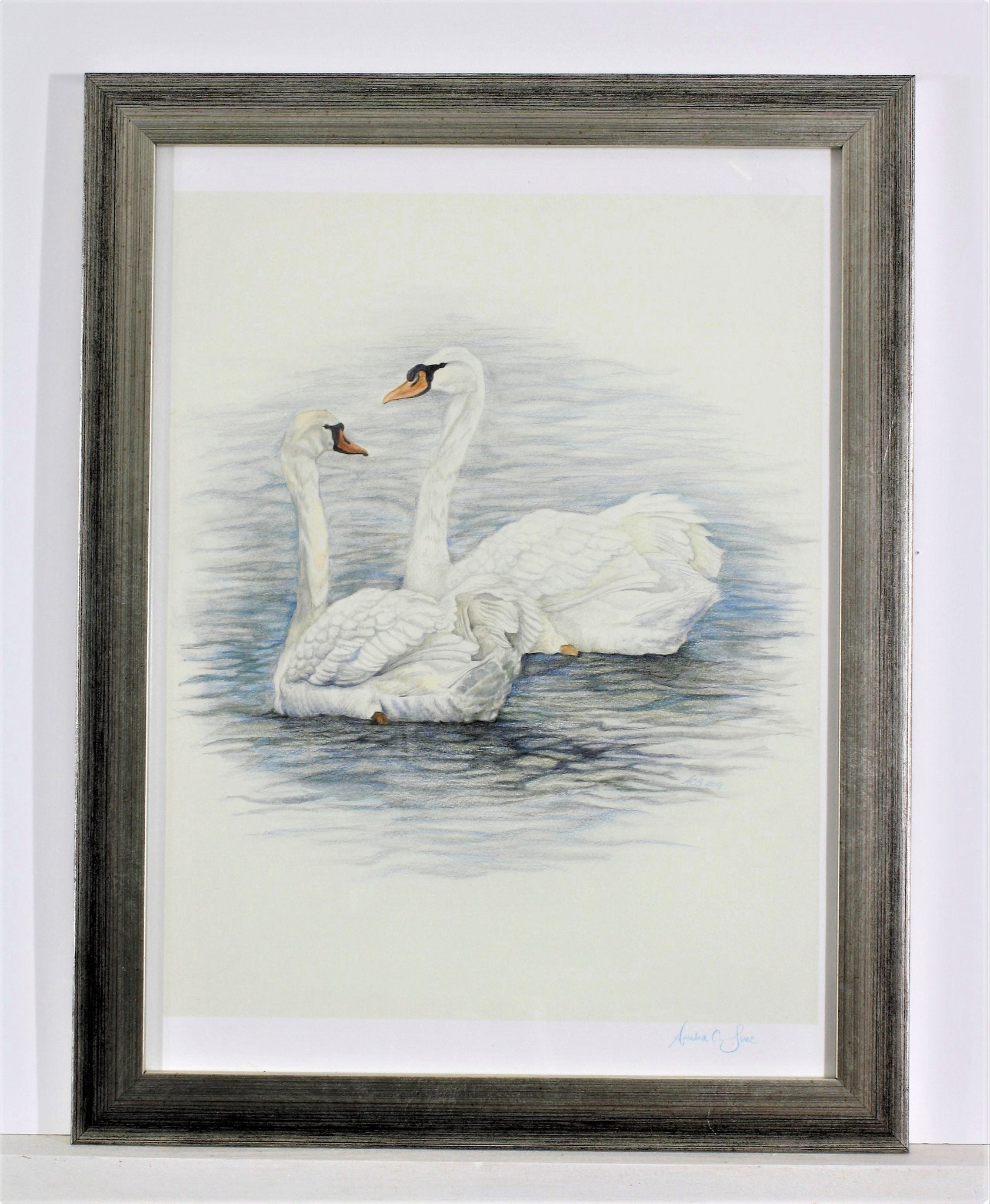 Watercolor Swans in Silver Frame
