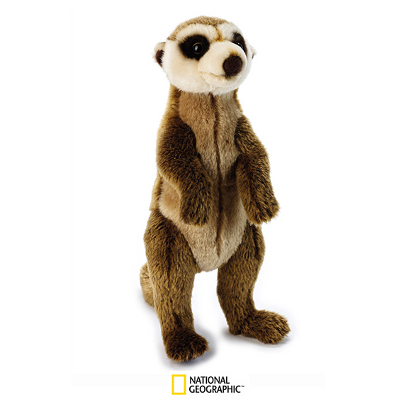 Kids Plush Toy | National Geographic Plush - Meerkat