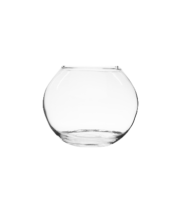 Decor Bowl | FISH BOWL