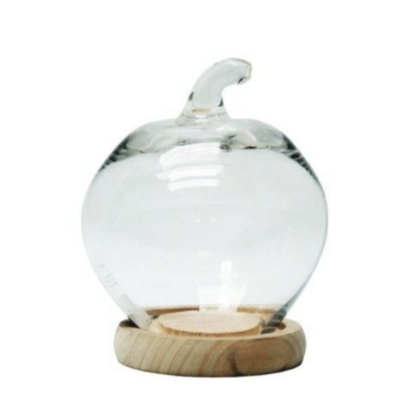 Apple Display Glass Dome 22X16CM
