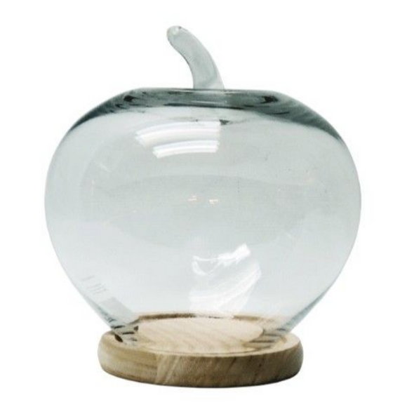 Apple Display Glass Dome 27X24CM