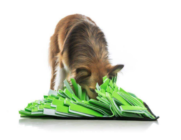 Dog Interactive Toy | 40 x 40cm White/ Green Snuffle Mat
