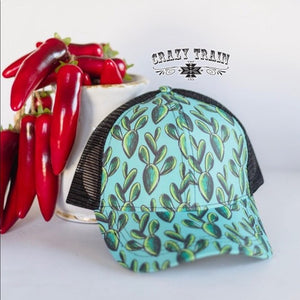 Crazy Train Kiss My Cactus Cap