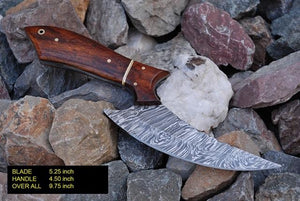 Damascus steel Hunting Knife & Rose Wood Handle -AJ 855