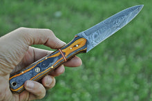 Load image into Gallery viewer, Damascus Steel Hunting boot Knife Stain wood Handle-AJ-1634
