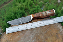 Load image into Gallery viewer, Damascus Steel Hunting Knife Brass Guard with Stain wood Handle-AJ-1708