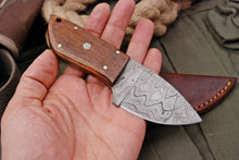 Load image into Gallery viewer, Custom Hand Forged Carbon Steel Hunting MINATURE Knife with Olive Wood Handle AJQ-2794